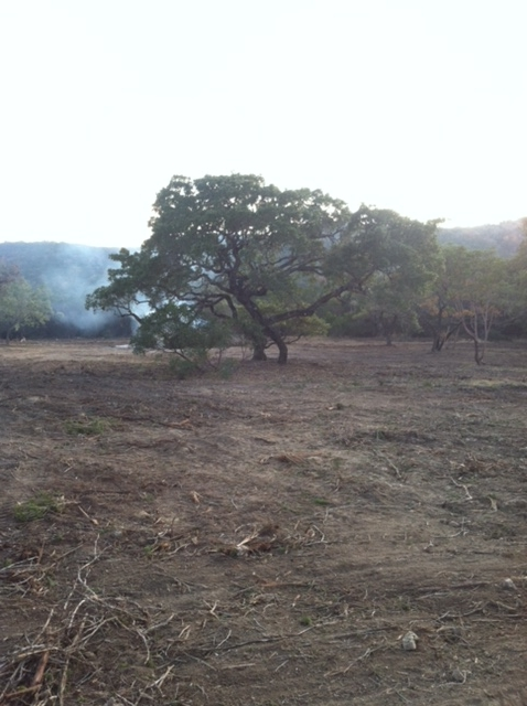 land-clearing-bexar-county